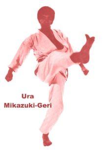 1410498bdc02c6c9a7c7ed8bfef9f4e0--karate-kata-shotokan-karate