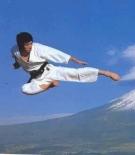 71e498d0762337ef07d744c760f55d6f--karate-club-shotokan-karate