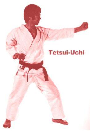 79a6a6e384d37a334a6767f85a9d6951--karate-kata-shotokan-karate
